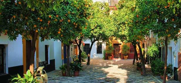 Barrio de santa cruz en sevilla areas autocaravanas - Orange en sevilla ...