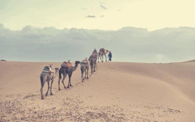 Aires de camping-car ouvre un espace au Maroc