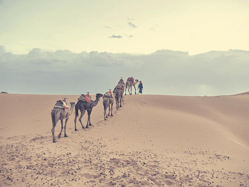 áreas autocaravanas marruecos